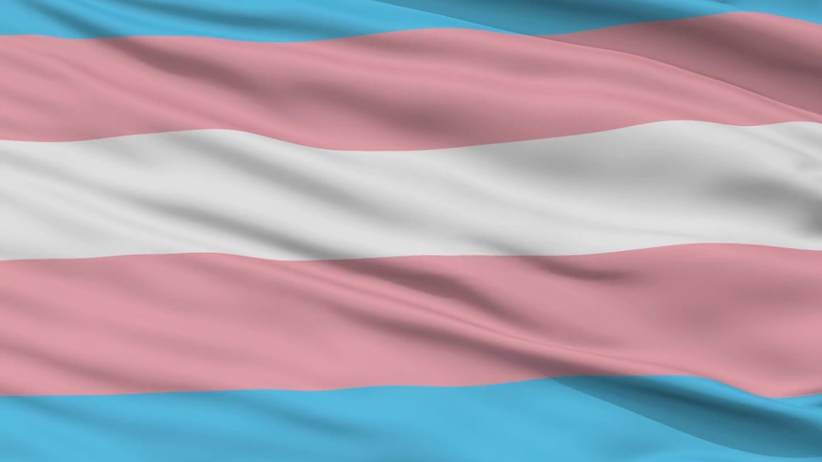 transgender-pride-flag-close-up-realistic-3d-animation-seamless-loop-10-seconds-long_b30yrv0o__F0000