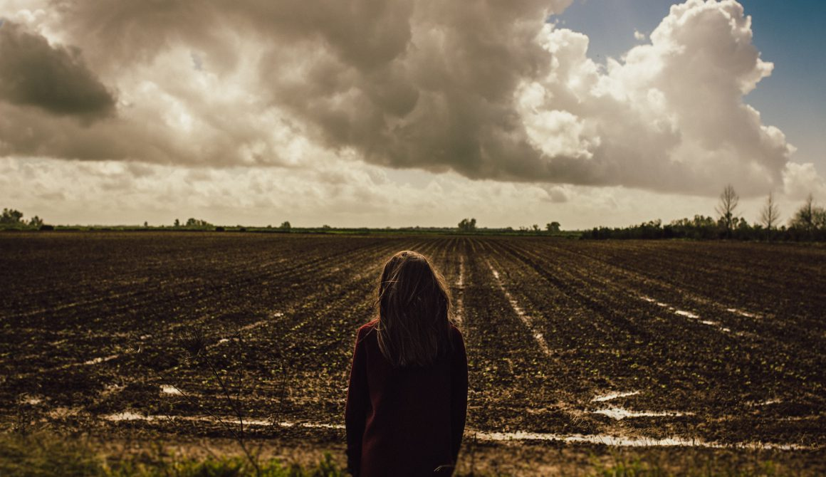 agriculture-clouds-country-929460